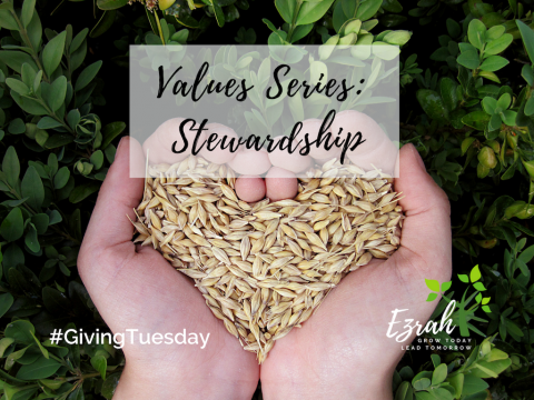 Values Series: Stewardship